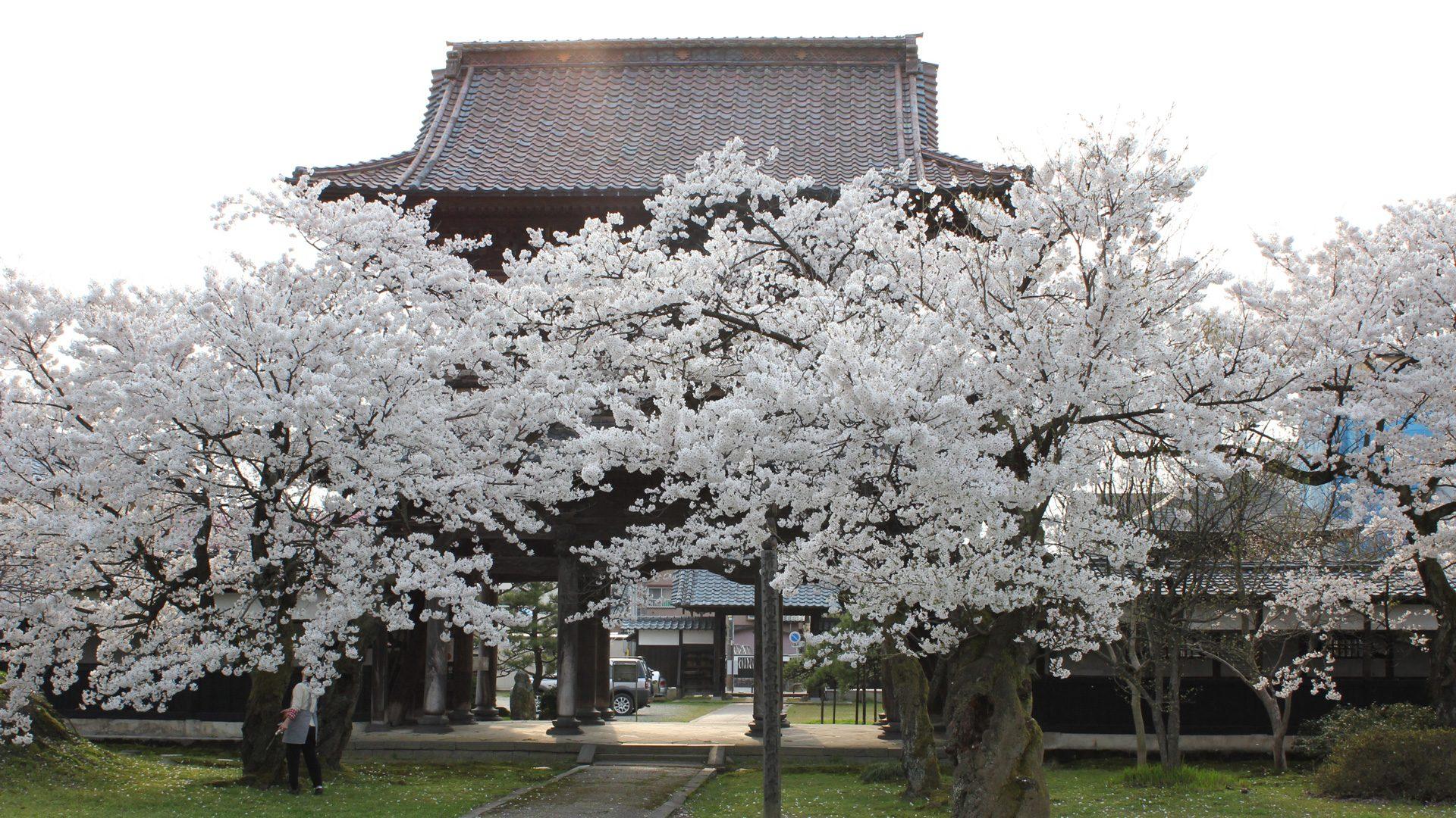 廣澤山宝光寺